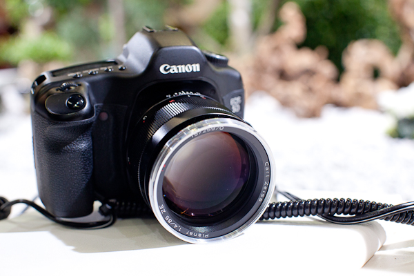 Carl Zeiss 85mm 1.4