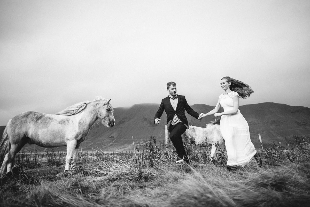 Iceland wedding, Island shooting, horses photos